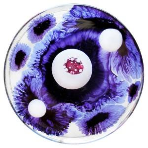 http://public.media.smithsonianmag.com/legacy_blog/The-Color-Purple-Klari-Reis.jpg