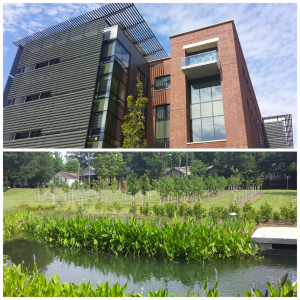 The Business of RM course was held in the new Engineered Biosystems Building (EBB) at Georgia Tech, shown above, surrounded by lovely greenery.